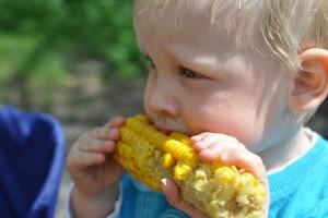 child-559415_1920