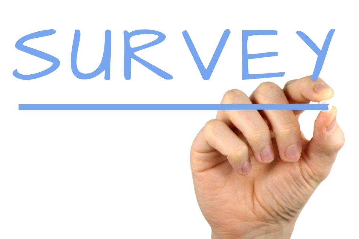 Online reader survey