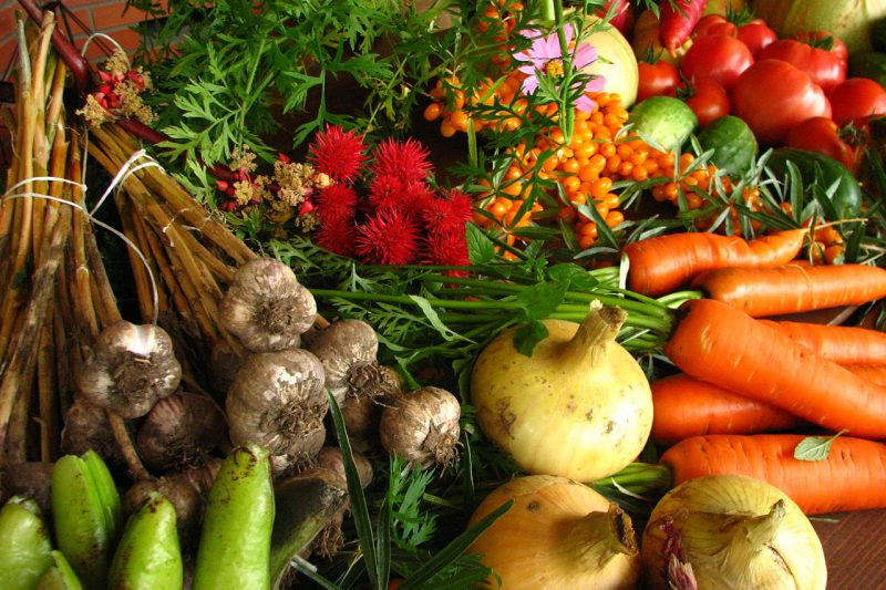 Shoppers call for discount incentive to buy imperfect fruit and vegetables