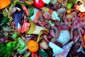 Positive start for food waste bill