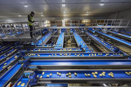 £6m investment for UK potato supplier