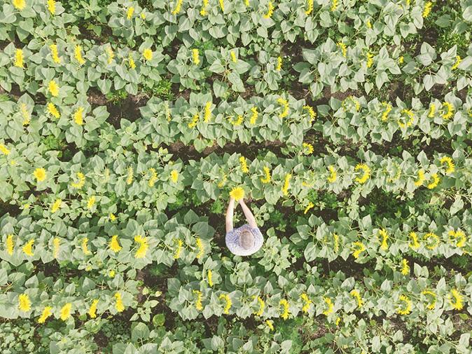 Bunge Loders Croklaan expands oils and fats portfolio to meet organic demand