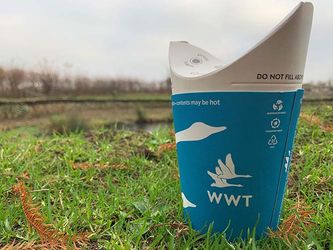 ButterflyCup launches as UK's first plastic-free lidless disposable cup