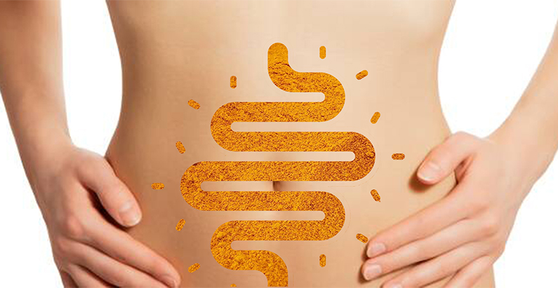 """DolCas Biotech undertakes new research on Curcumin and the """"brain"""" in the gut"""