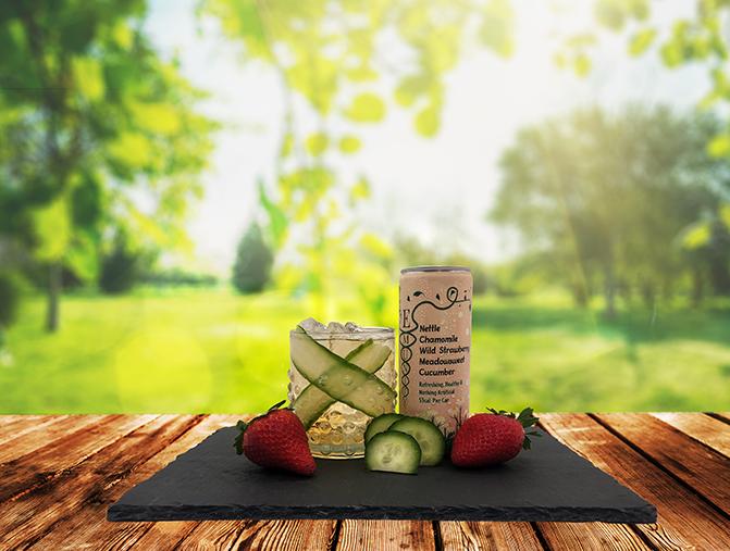 New soft drink harnesses health & healing properties of nettle