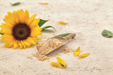 Sternchemie sunflower lecithin granted GRAS No-Objection Letter by FDA