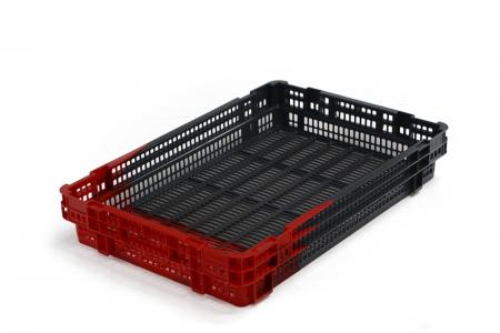 Exporta Global expands crate range