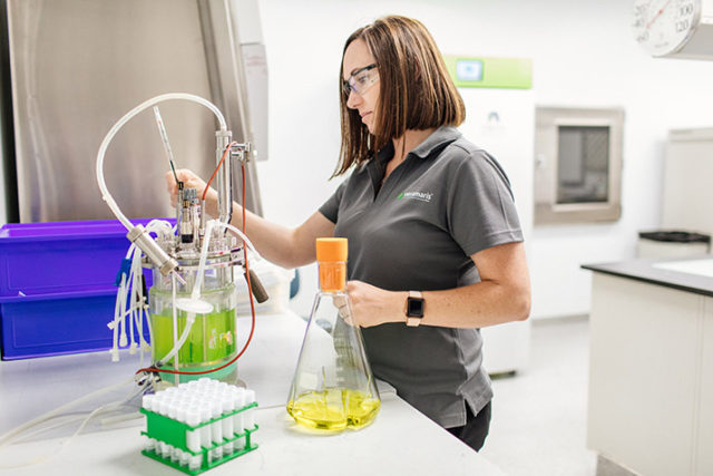 Automating production at the world's first facility making omega-3 oil from marine algae