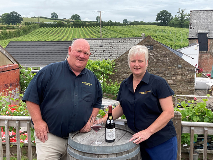 Welsh vineyard beats world's leading producers to secure Decanter's gold medal