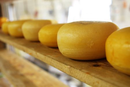 Dairy growth opportunity for cheese snacks