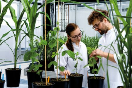 Food cultures and enzymes helps growth at Chr Hansen