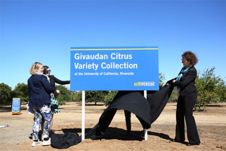 Givaudan demonstrates its commitment to citrus biodiversity