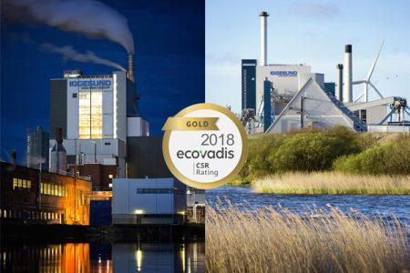 Iggesund Paperboard mills awarded Gold Standard
