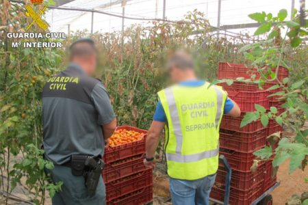 Over €100m of fake food and drink seized in latest operation