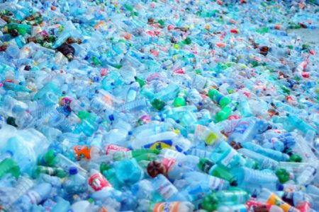 Study finds microplastics in humans