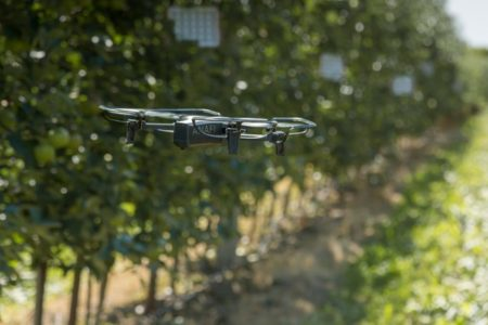 Land Robots announces AI robot project in support of UK's wine industry